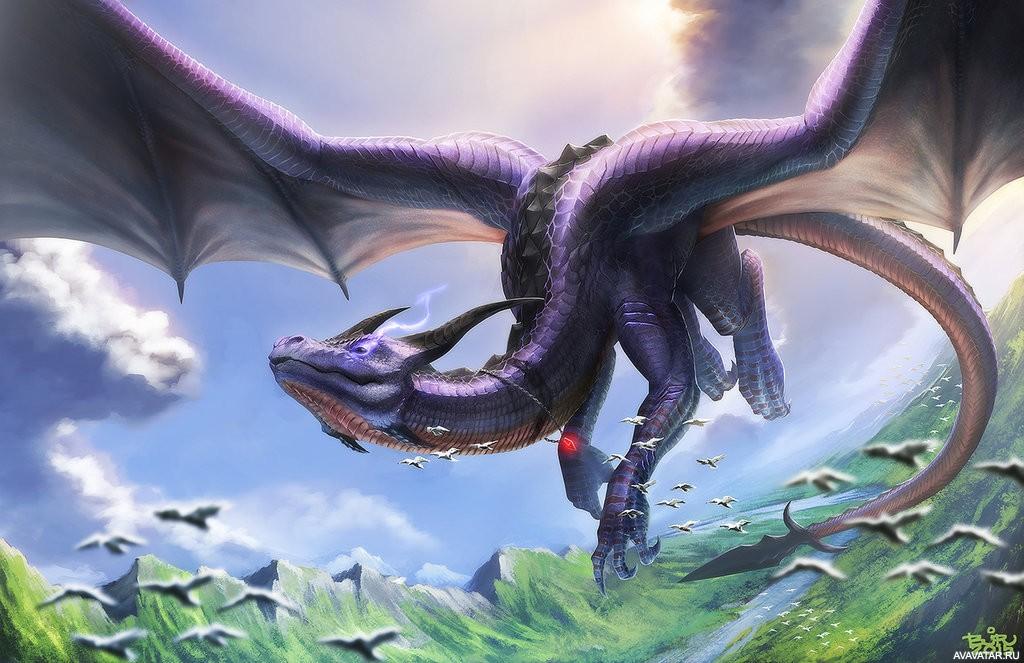 правило, большие картинки с драконами разослал