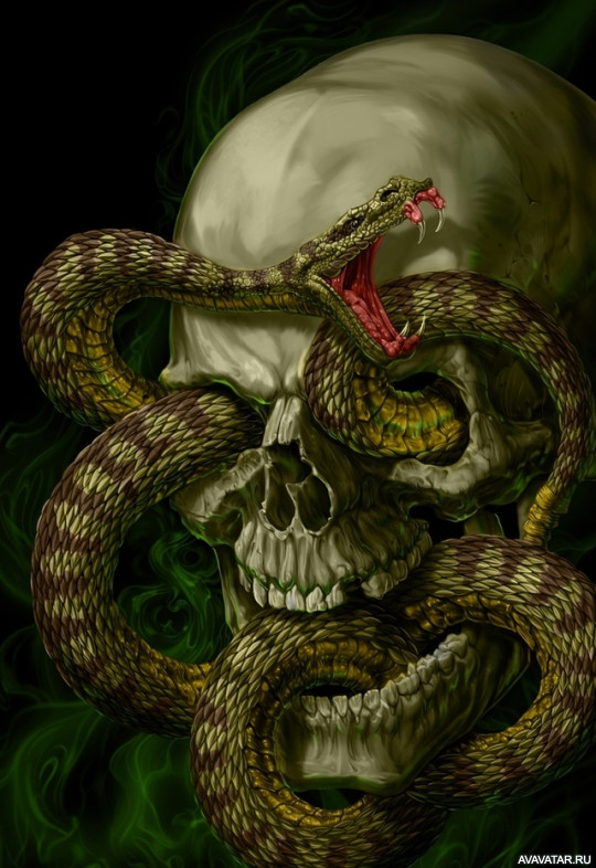 предмет твоих картинки черепа со змеями этому