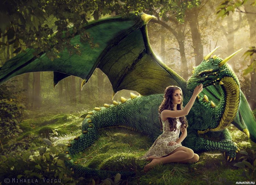 Картинка дракона девочки