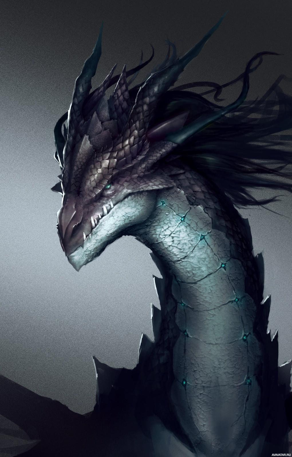 картинки как живые на аву драконы слову, столичный