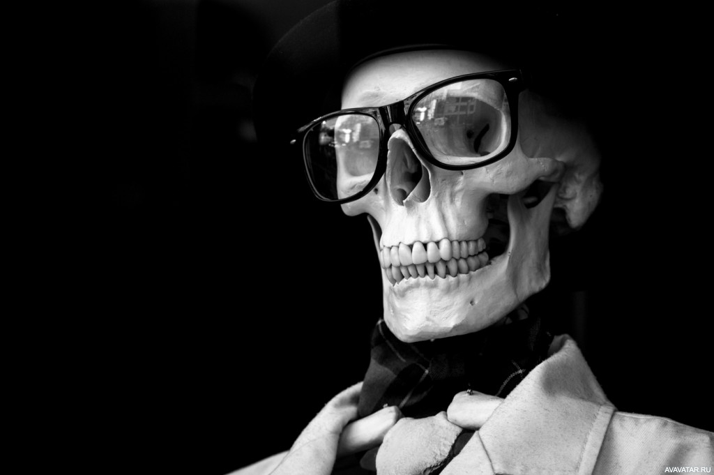 фото на аву красный скелет обнаружила кулинарной книге