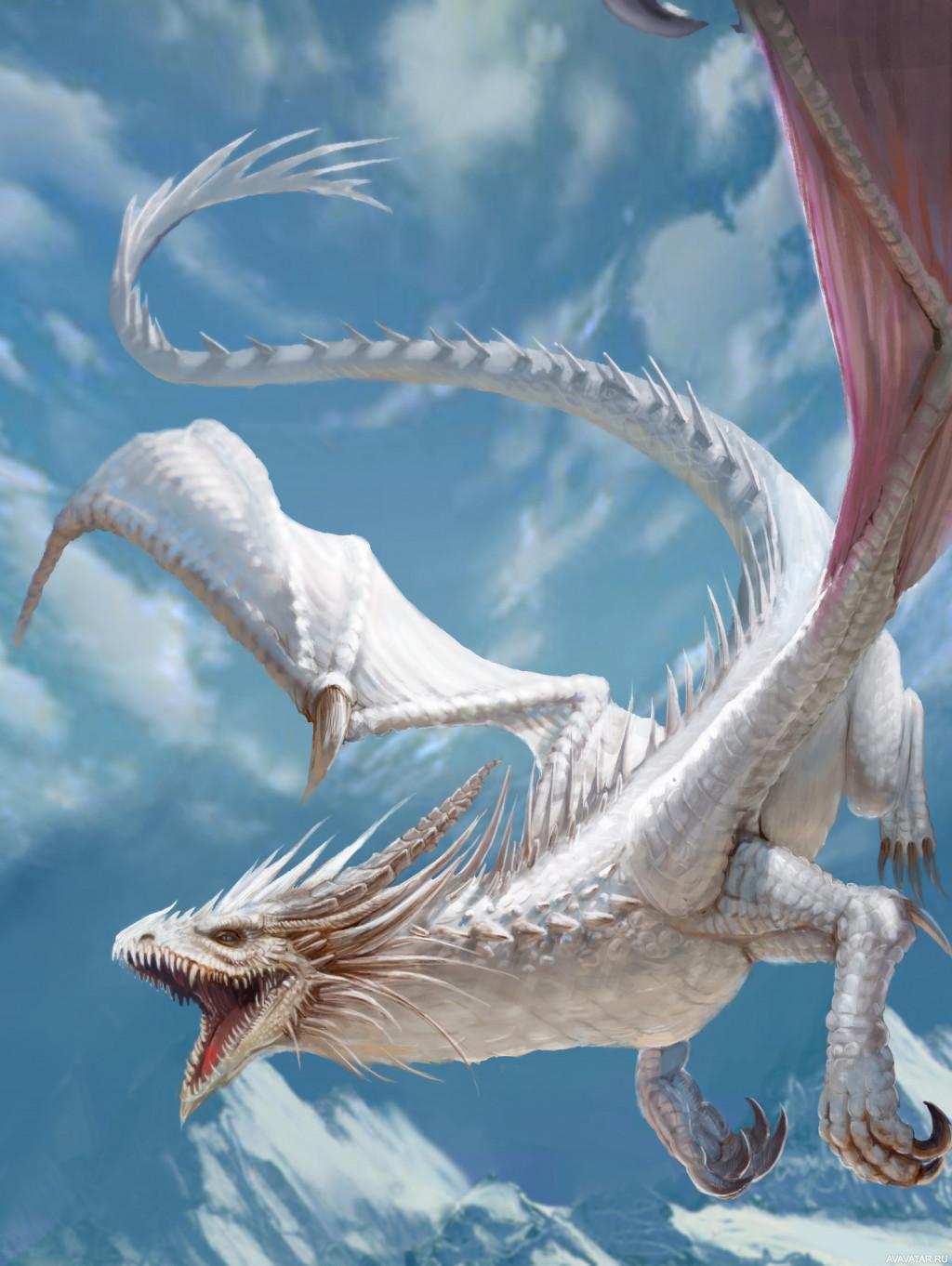 самый большой дракон картинки для